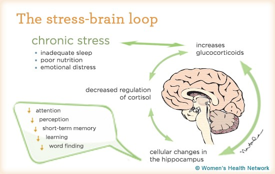 can-severe-stress-cause-memory-loss