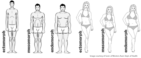 ectomorph-body-type-2
