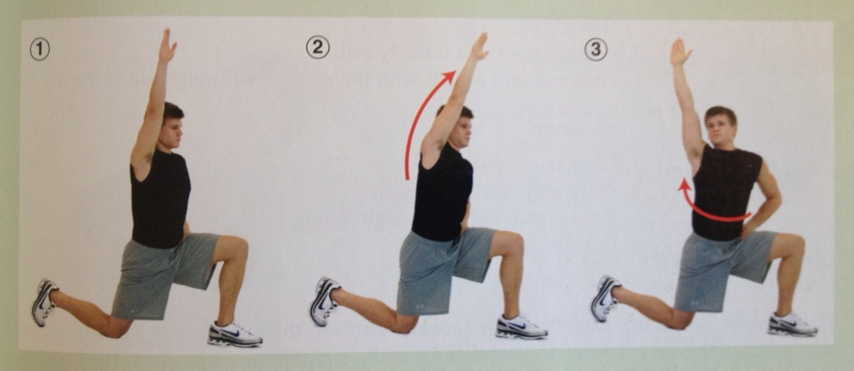 Yoga Anatomy - Hips, Hamstrings and Lower Limb