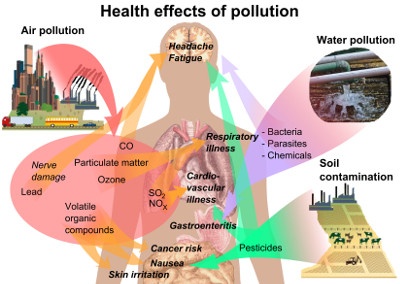 Persistent-Organic-Pollutants-And-Diabetes