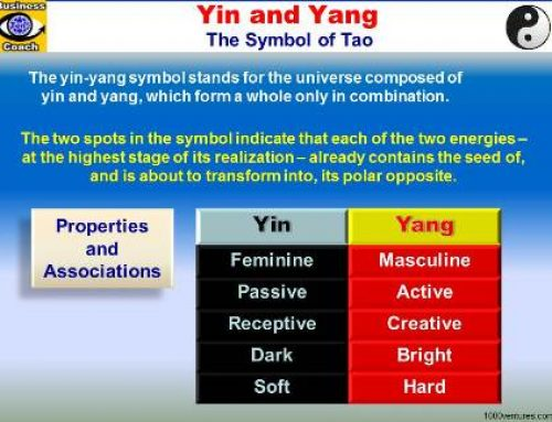 Finding Balance in life with Yin & Yang forces