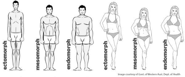 ectomorph-body-type-2
