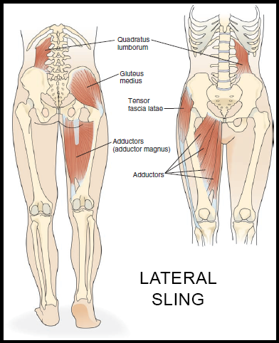 Lateral Sling System Core Stability Part 3