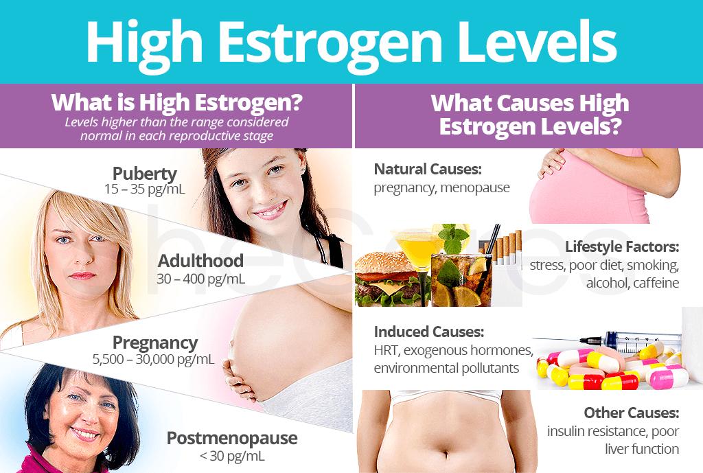 High Estrogen Levels